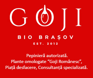 Goji Bio Brasov 2021