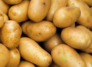 tratamentul comun al cartofilor